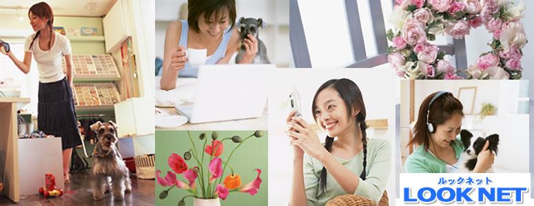 福岡情報、福岡生活情報サイト ルックネット福岡
